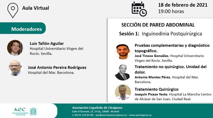 Webinar- Aula Virtual AEC-Sección Pared Abdominal. Sesión 1: Inguinodinia Postquirúrgica