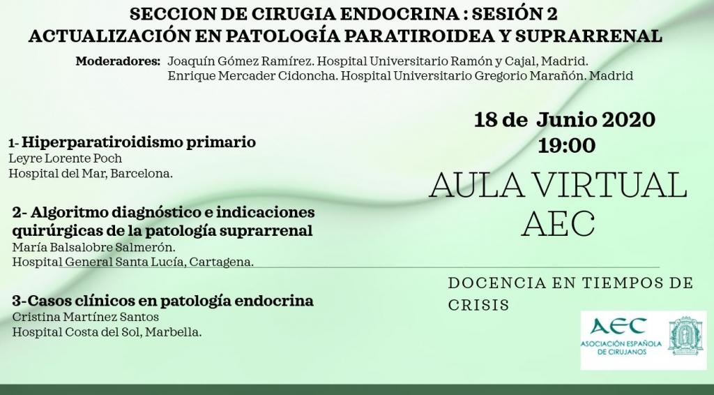 Webinar-Aula Virtual de la AEC- Sección de Cirugía Endocrina: Sesión 2:Actualización en Patología Tiroidea y Suprarrenal