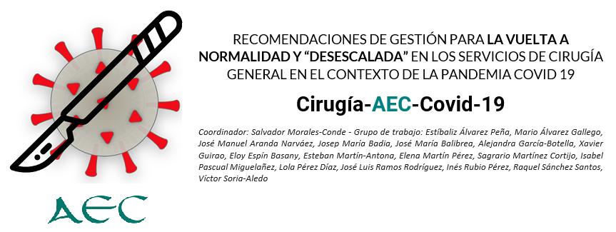 """Recomendaciones para el """"desescalado"""" - COVID-19"""