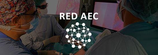 RED AEC: Nuevo proyecto